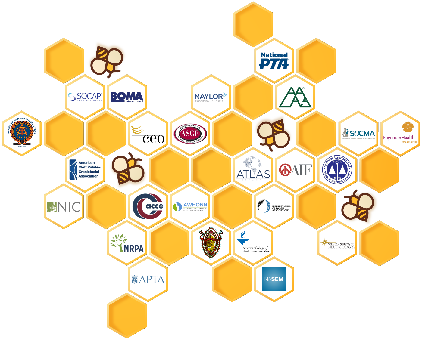 Every new association and nonprofit client becomes a member of The DelCor Hive!